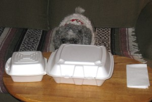 Daisy and takeaway