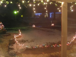 Smiling Christmas lights :)