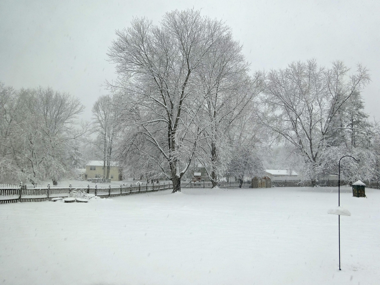 Winter | Everyday Adventures in Havachon Heaven
