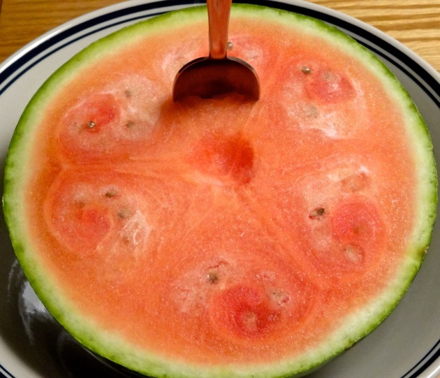 One of our weekly mini-watermelons that Daisy considers to be her dessert bowl. :)