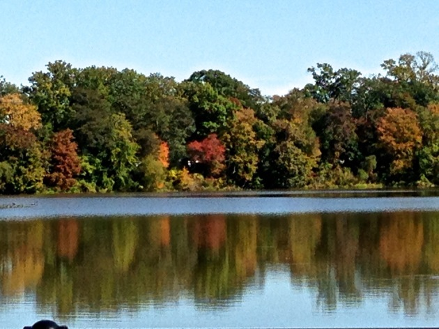 fall at the lake